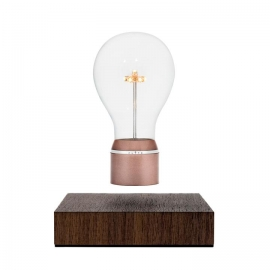 Flyte - Levitating Light Edison (buckminster)